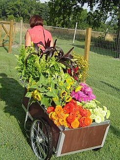 Cart of Flowers 006