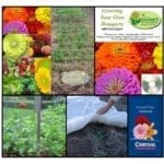 grow your own bouquet kit square