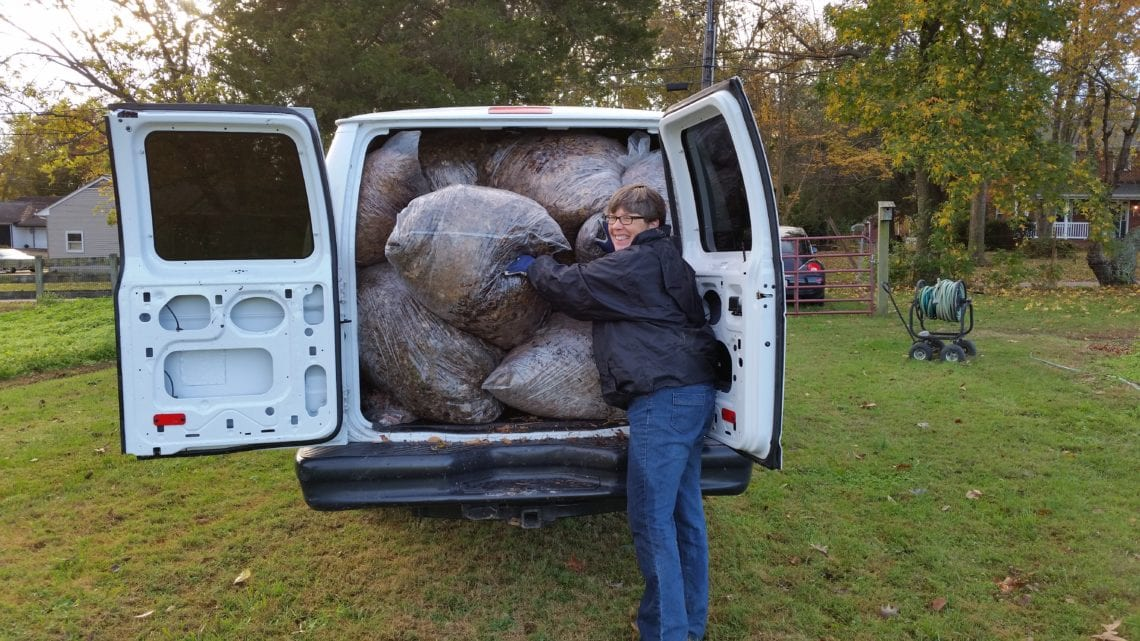 Over the years we have learned to pack the truck so full of leaves there is little room for air!