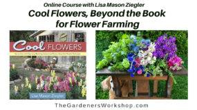Cool Flowers, Beyond the Book For Flower Farming