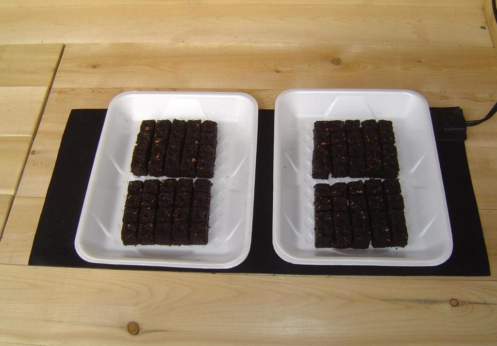 "9"" x 19"" seedling heat mat is just one step in the seed starting process."